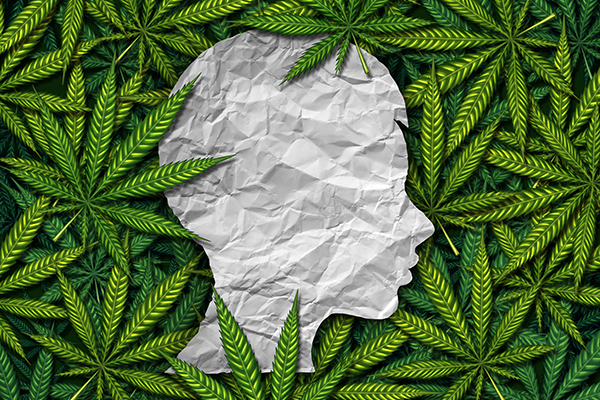 The Benefits Of Cannabis For Autistic Children